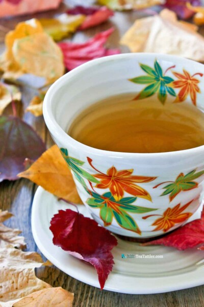 Autumn Tea - poem and musings of the changing seasons with pictures of the fiery autumn landscape with shades of gold to rich mauve. | TeaTattler.com #autumntea #autumn #changingseasons