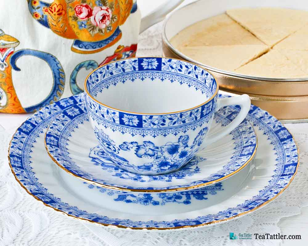 Dorothea China Blue by Seltmann Weiden, Germany teacup and saucer in classic blue and white design adorned with floral and leaf motifs. | TeaTattler.com #dorotheachinablue #teacup